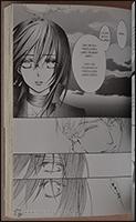 Nach Mr. Rods Tod fliegt Mikage nach Japan um ein neues Leben anzufangen
