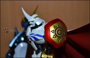 Detailaufnahme des Brave Shield