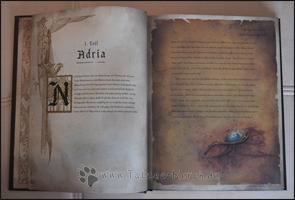 Aus dem ersten Kapitel des Buches - ein Auszug über Adria