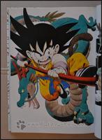 Ein sehr dynamisches Artwork von Son-Goku und Shenlong =)