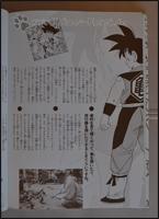 Ein Auszug aus dem Interview mit Toriyama-Sensei =)