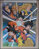 Auf der Rückseite des Posters ist Son-Goku in all seinen Formen zu sehen =)