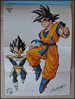 Das Poster zeigt - wie immer - das Cover noch mal in groß ;)