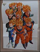 Alle Super-Saiyajins sind hier versammelt - Gogeta fehlt natürlich, da er in der Serie regulär nicht vorkommt ;)