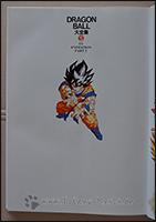 Der Schmutztitel wird von einem Goku geziert, der das Kame Hame Ha auf den werten Leser anwendet ;)