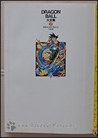 Der Schmutztitel zeigt Goku und Shenlong
